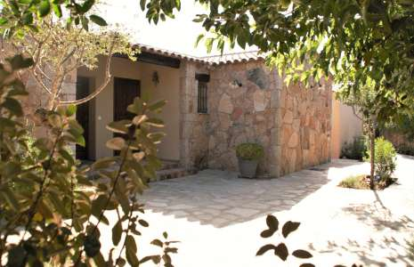 location maison palombaggia